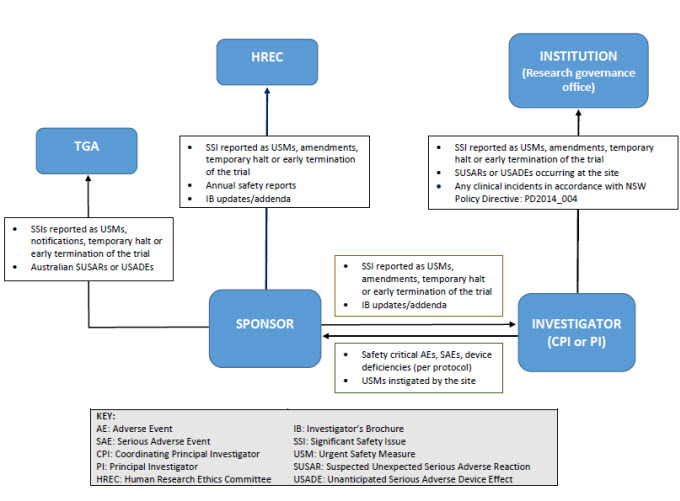 The safety reporting flowchart for therapeutic trials illustrates the safety reporting responsibilities of the Sponsor and the Investigator to the Institution, Human Research Ethics Committee and Therapeutic Goods Administration. The Investigators responsibilities are to report: • all safety critical Adverse Events, Significant Adverse Events, device deficiencies per protocol, and Urgent Safety Measures instigated by the site to the Sponsor; and • all Significant Safety Issues, Urgent Safety Measures, amendments, temporary halt or early termination of the trial, Suspected Unexpected Serious Adverse Reactions, Unanticipated Serious Adverse Device Effect occurring at the site, and any clinical incidents in accordance with NSW Health's Policy Directive (PD2014_004), to the Institution (Research Governance Office). The Sponsor's responsibilities are to report: • all Significant Safety Issues, Urgent Safety Measures, amendments, temporary halt or early termination of the trial, and Investigator's Brochure updates to the Investigator; and • all Significant Safety Issues, Urgent Safety Measures, amendments, temporary halt or early termination of the trial, annual safety reports and Investigator's Brochure updates to the Human Research Ethics Committee; and • all Significant Safety Issues, Urgent Safety Measures amendments, temporary halt or early termination of the trial and Suspected Unexpected Serious Adverse Reactions Unanticipated Serious Adverse Device Effect occurred in Australia to Therapeutic Goods Administration.